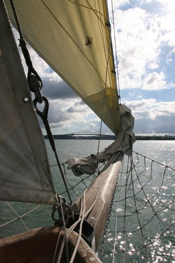 I was sailing on the Ted Ashby boat in Auckland harbour on the 24th April