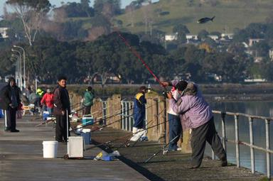 Bryan Lay Yee;FlyFishing; Fishing off Old Mangere Bridge
