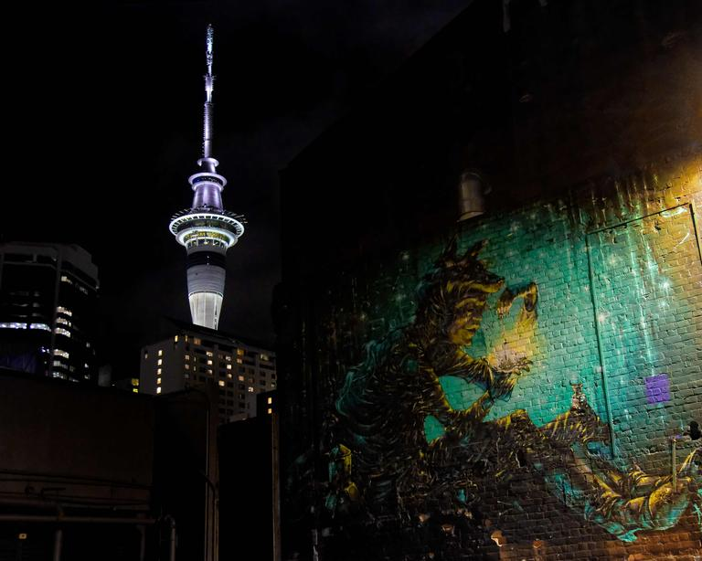 A reflection of the wide variety of art forms that Auckland City has to offer