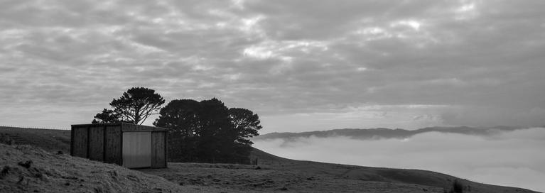 Taken in the Kaipara Hills