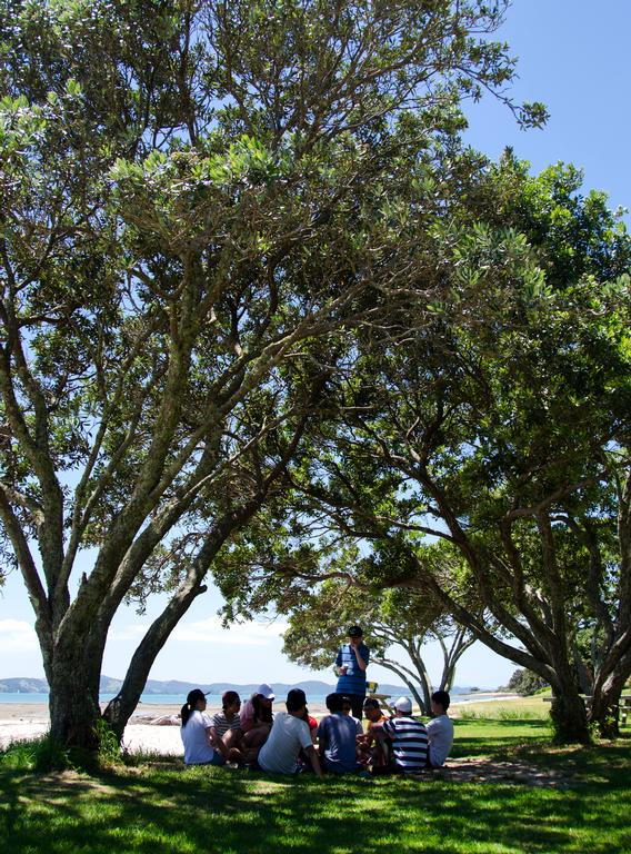 zhengxing Huang; Fellowship; showing a chill environment of a group of people, with unique framing and composition of picture, position of trees and space between trees and group of people on both sides reveals separate the background and foreground at same time it outstand the crowds showing they are having a good time. photo took at Omana Beach, Maraetai, Auckland, New Zealand, 19/01/2019.