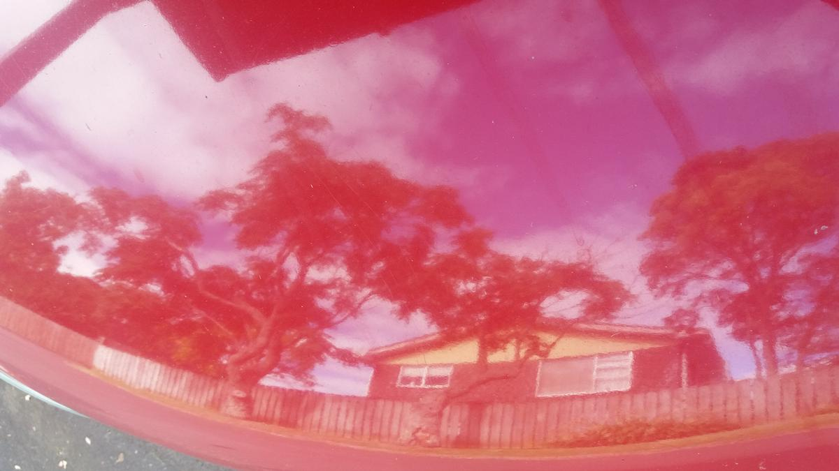 Aileen Robertson;Passing the time in lockdown;Reflection of the neighbours house and trees on the bonnet of my car