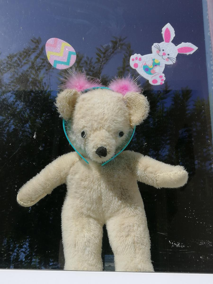 Lex Priestley; Dressed to Impress; Sixty year old Teddy plays the Bear Hunt game at Easter
