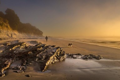 Gao Tao;Early bird walking on beach