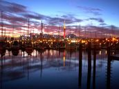 Trevor Andrews; Westhaven sunrise; City of masts, waiting to be taken out for a sail