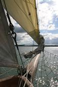 Anita Szabo Ryan; Sailing 1; I was sailing on the Ted Ashby boat in Auckland harbour on the 24th April