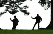 Jerry Zinn;Tai Chi; EARLY MORNING ON TAKAPUNA RESERVE