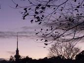 Richard Mayes; Sky Tower from Ponsonby Rd