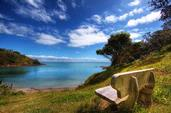 Chris Gin; The Lookout; A beautiful day on Waiheke Island.