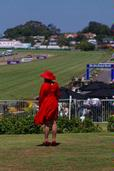 Kevin Mansell;A day at the races; Ellerslie New Years Day