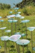 Leigh Burrell;Sea of Bowls by Jenny McLeod;NZ Sculpture OnShore 2014