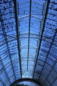 Aaron Kang; Sky and glass ceiling; Auckland Domain Wintergardens
