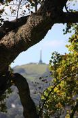 Leigh Burrell;Faded obelisk;View of One Tree Hill